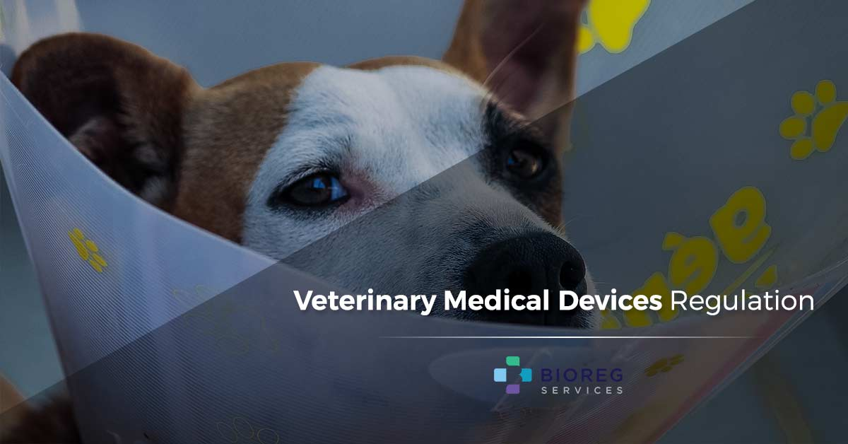 Veterinary Medical Devices Regulation